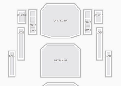 DeVos Performance Hall Seating Chart