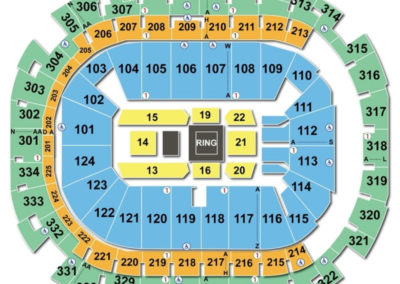 American Airlines Center Seating Chart Boxing