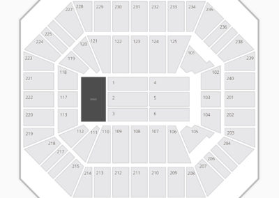 DCU Center Seating Chart Concert