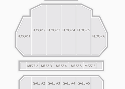 Fox Theater Seating Chart Detroit