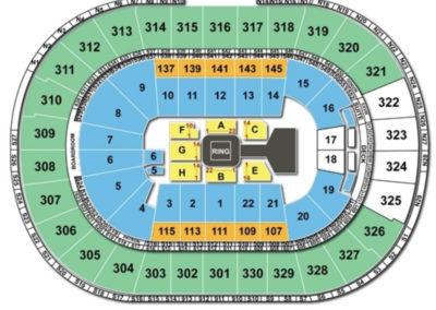 TD Garden Seating Chart wwe