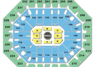 Talking Stick Resort Arena UFC Seating Chart